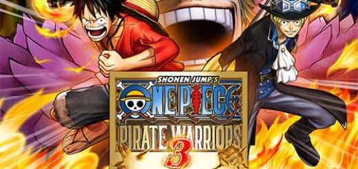 save-for-one-piece-pirate-warriors-3